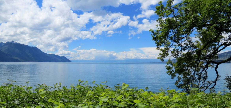 Lac Léman, en Haute Savoie