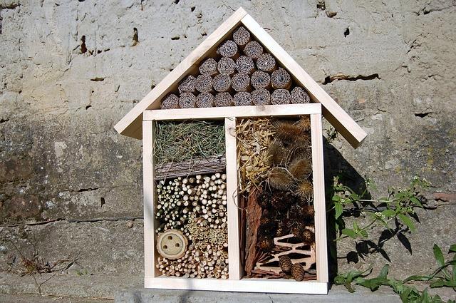 Hotel à insecte pour la nidification